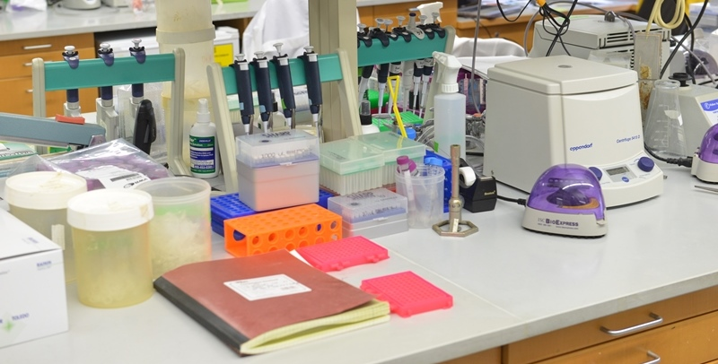 Photo of lab bench with materials