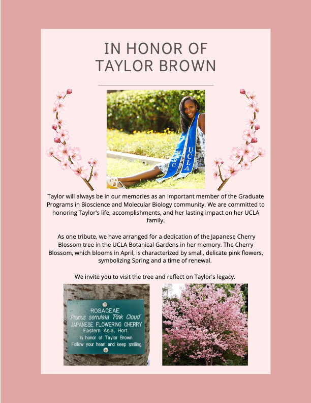 Taylor Brown Dedication Flyer